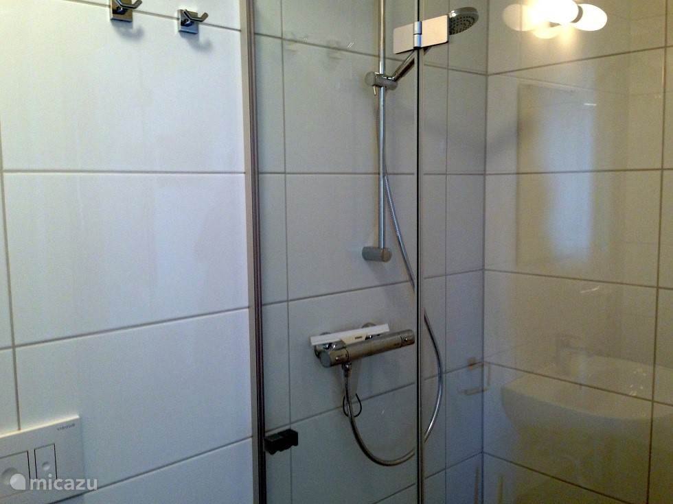 The shower, located in the bathroom next to one of the bedrooms.