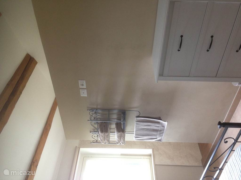 with walk-in shower and separate toilet