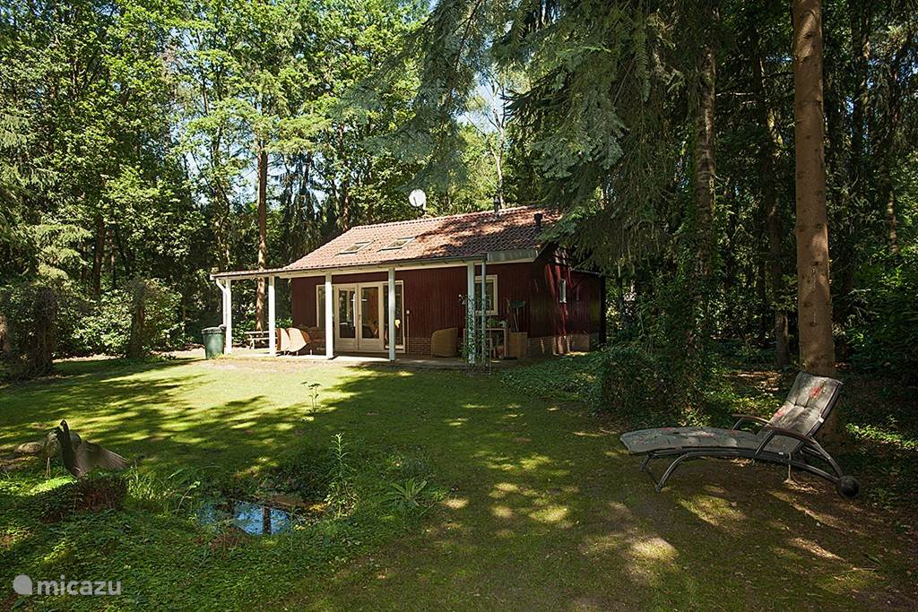 Rent Romantic Cottage in the forrest in Holten Overijssel Micazu