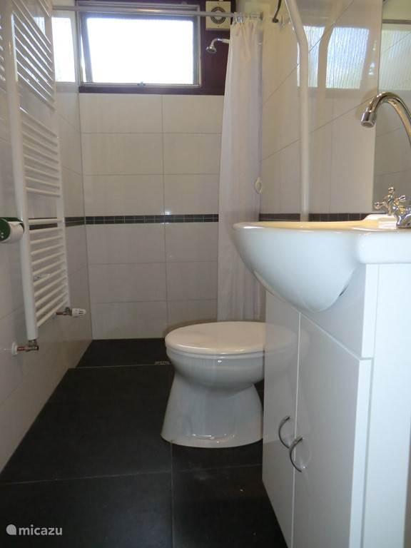 Badkamer met douche, wc, wastafelmeubel
