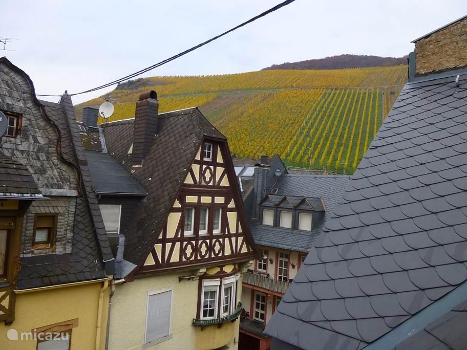 Blik over de wijnbergen uit slaapkamer nr 3