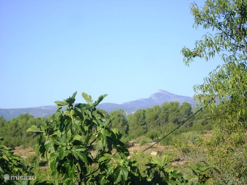de Penyagolosa, de berg die de streek domineert