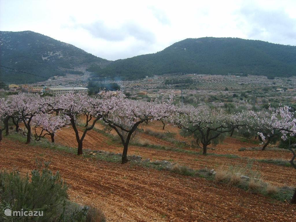 ook in de lente is de omgeving adembenemend mooi