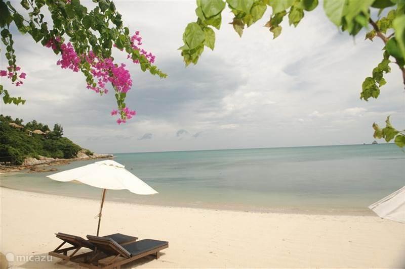 Ferienwohnung Thailand, Ko Samui, Koh Samui Villa Grand Beach und Pool Villa