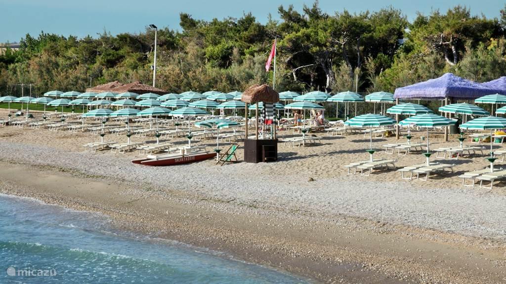 Pineto beach