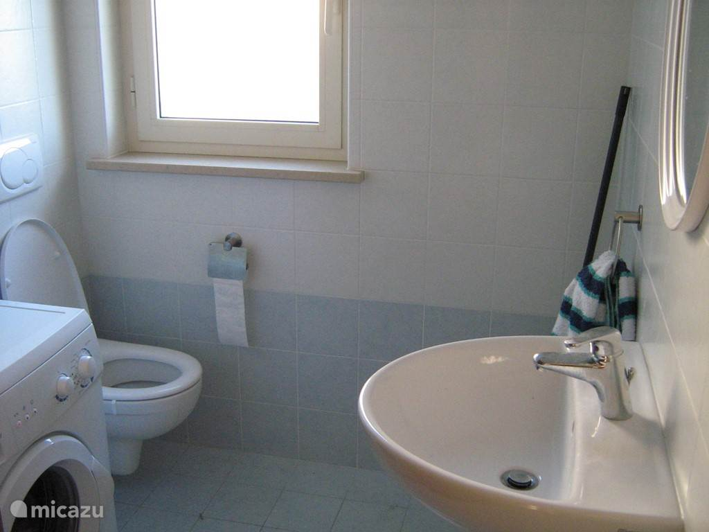 Small bathroom with toilet and washing machine