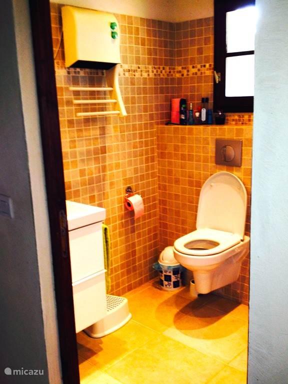 De badkamer heeft een inloop-douche, wc en wastafel.
