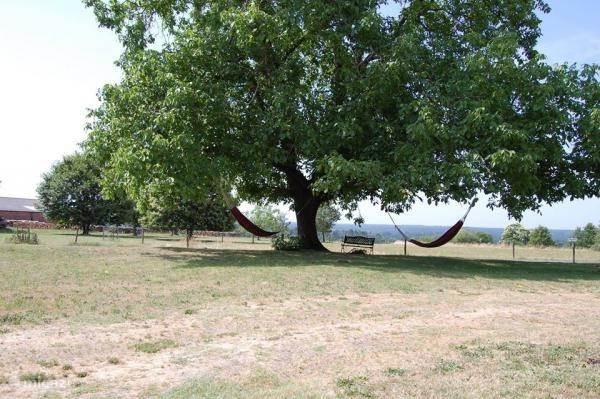 In de hangmatten onder de notenboom is het heerlijk genieten van de rust en de natuur.