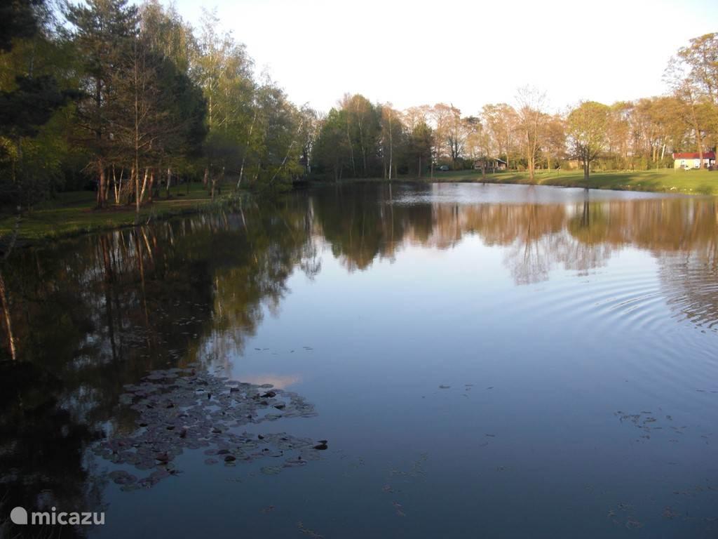 Visvijver midden op het bungalowpark