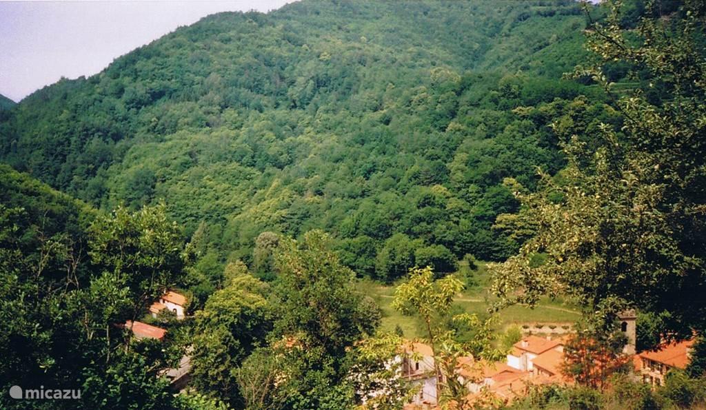 Uitzicht op dorp