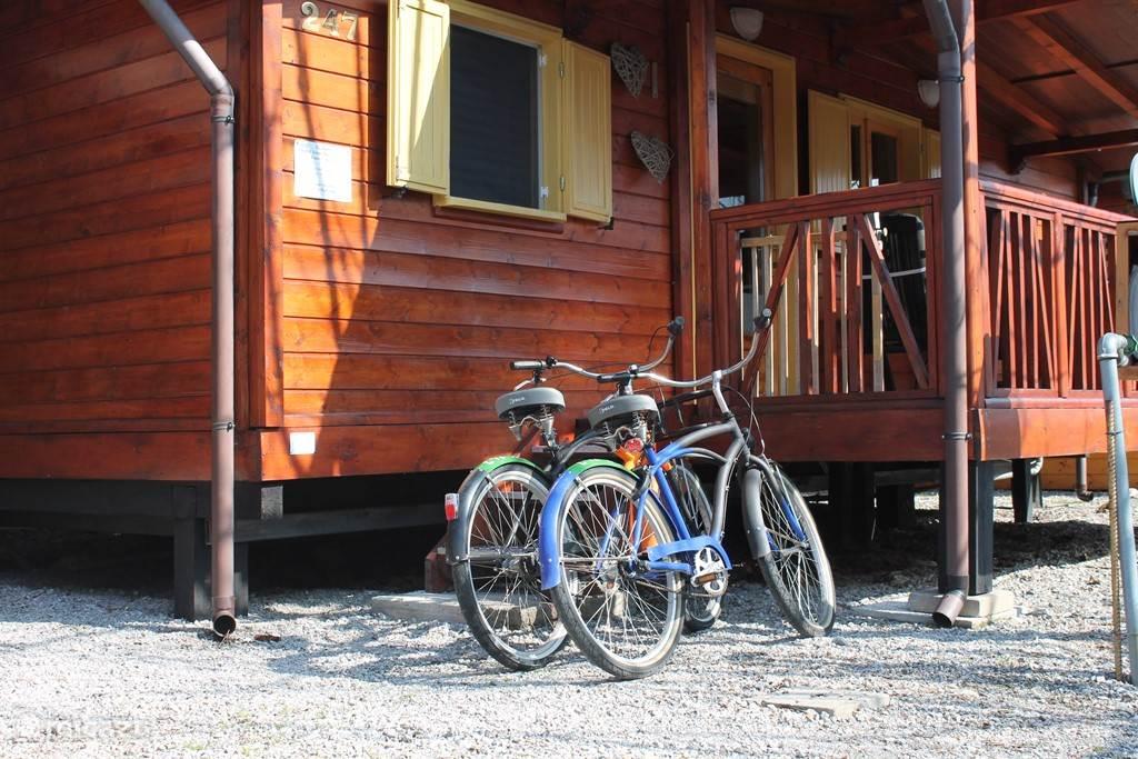 Twee fietsen tot U beschikking
