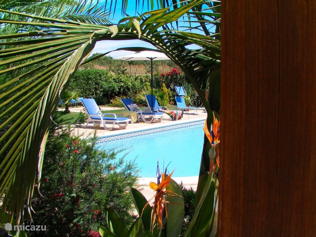 Het grote zwembad biedt veel verkoeling en speelplezier.