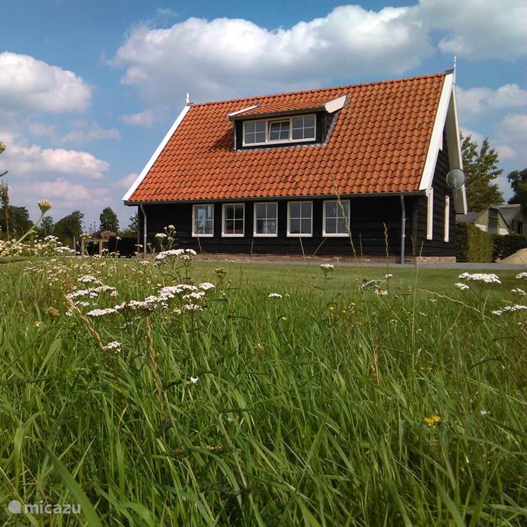 Jolande van Egmond