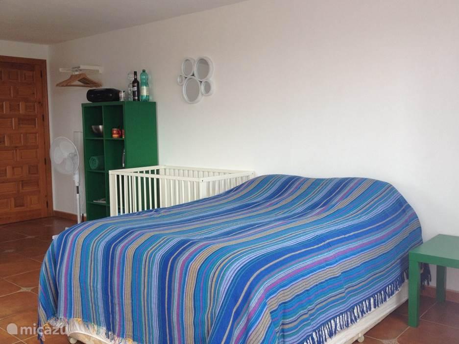 Zeer ruime 21m2 Slaapkamer/woonkamer met twee ramen.