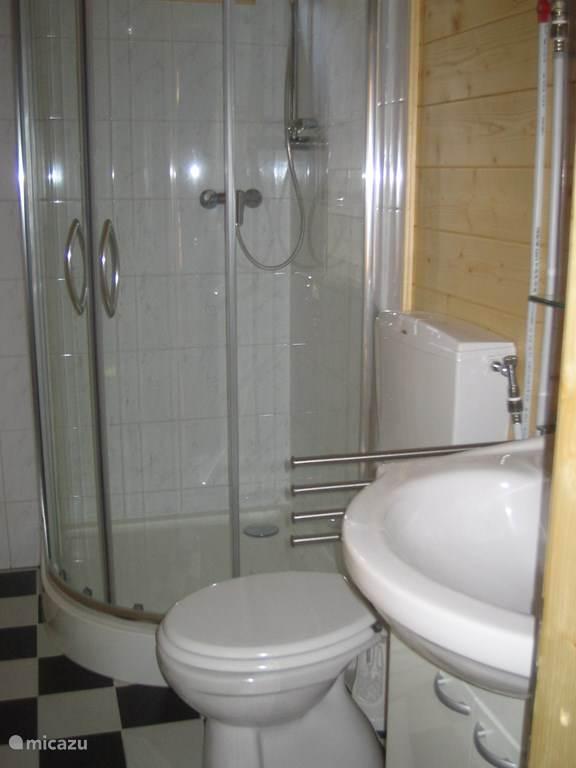 Badkamer met inloopdouche, WC en wastafel.