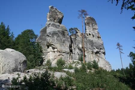 Tsjechisch paradijs