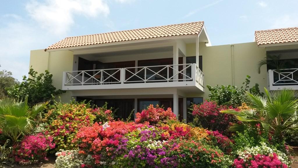 Last minute aanbieding 7-17 april Curacao 6 persoons appartement JanThiel Zeezicht, direkt aan Papagayo strand nu 20% korting €980 per week