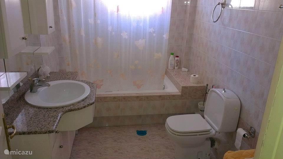 Badkamer met ligbad, toilet en vaste wastafel