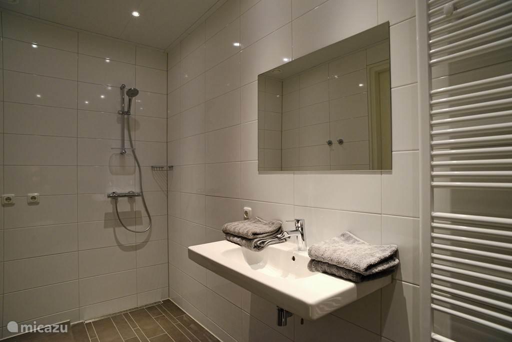 badkamer benedenetage