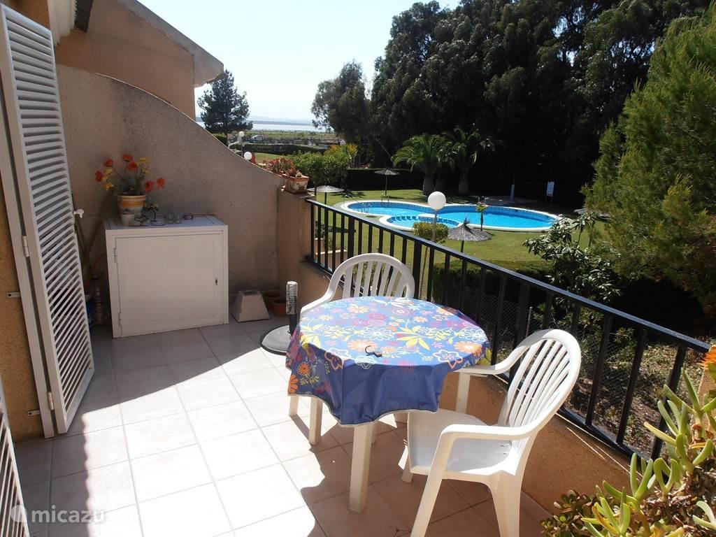 Uitzicht op het zwembad met tuin.