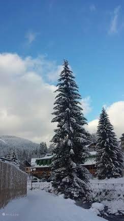 Winter in Tsjechië