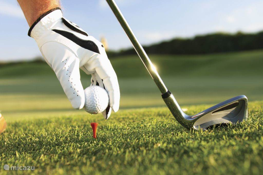 Diverse golfbanen in de buurt