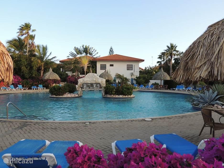 Een van de mooiste en grootste (25 m)  zwembadden op Curacao. Apart kinderbad. Met Palapas en voldoende strandstoelen en -bedden.