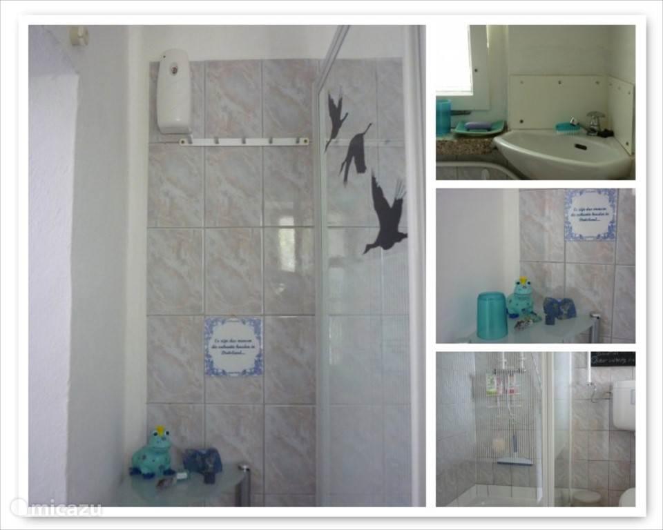 De badkamer met douche, 2e toilet en wastafeltje.