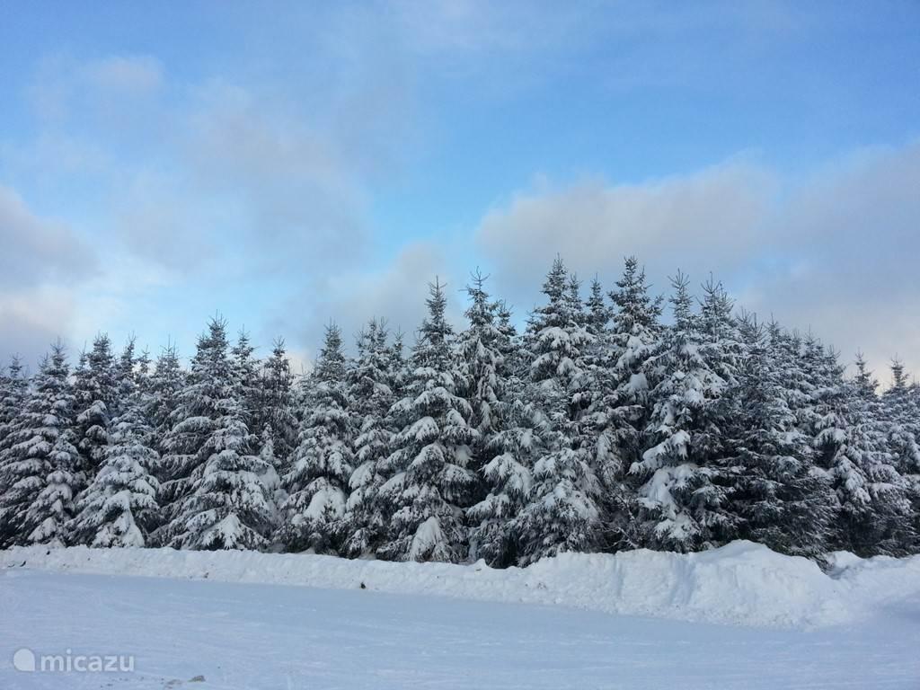 Genieten van de Winter in het Sauerland