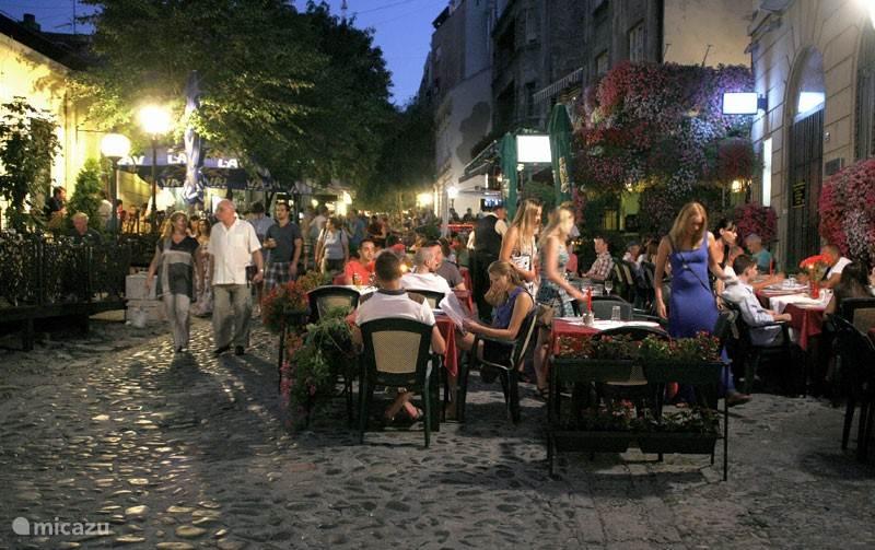 Skadarlija : traditioneel eten in het centrum van Belgrado
