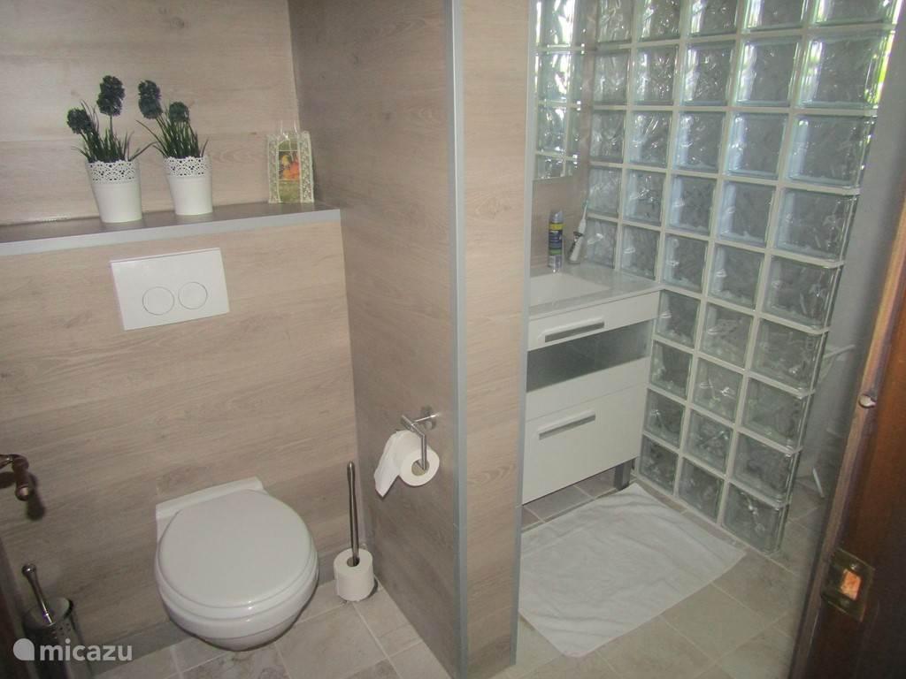 Badkamer 1 (Gast huis)