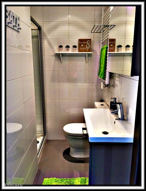 the handsome renovated bathroom with shower