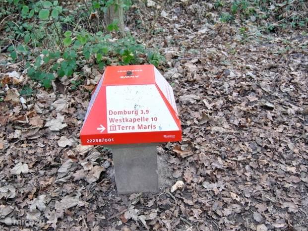 Een bos of strandwandeling naar het gezellige Domburg? U bent er zo!