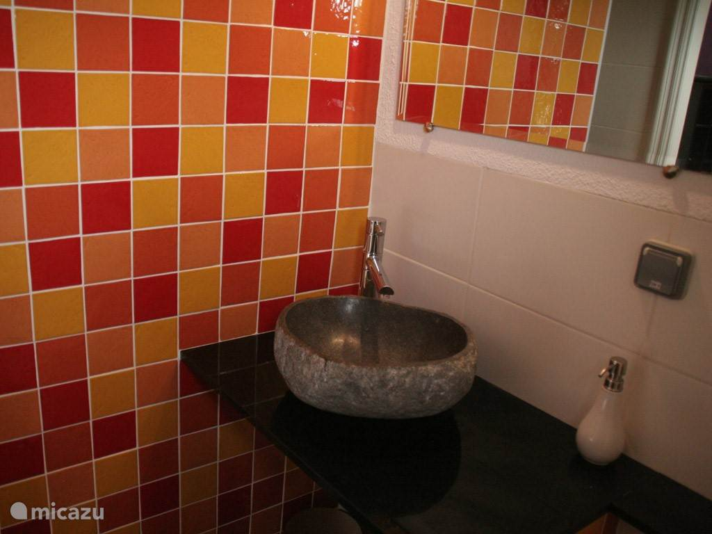 Eén van de badkamers