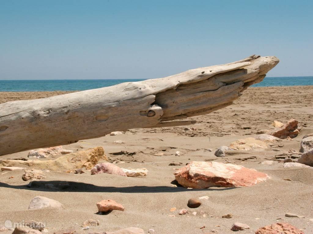 Verlaten strand in de Ebro delta