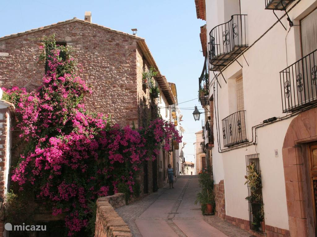 Vilafames, één van de pittoreske dorpjes in het achterland