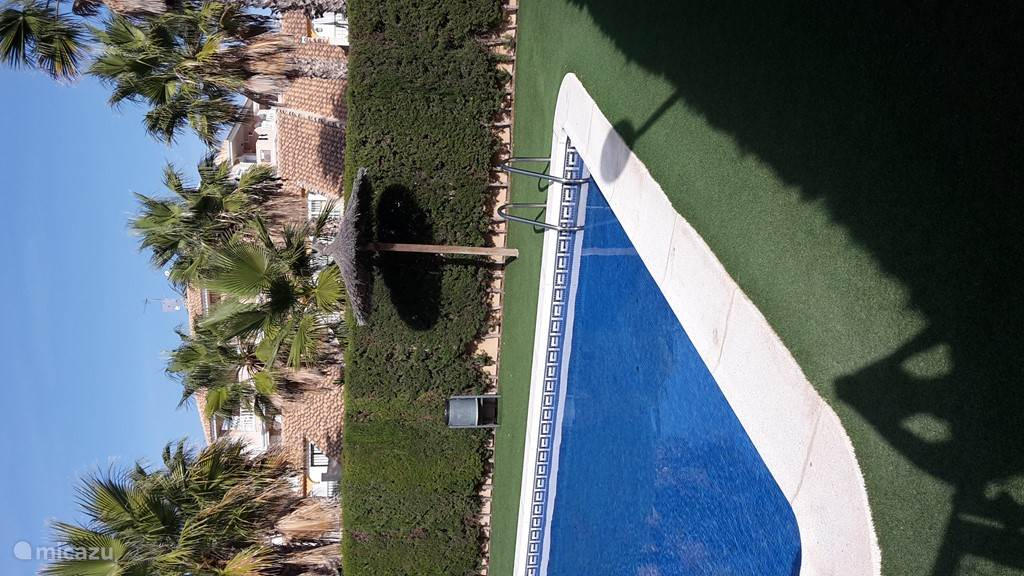 zwembad, volledig rondom aangelegd met kunstgras