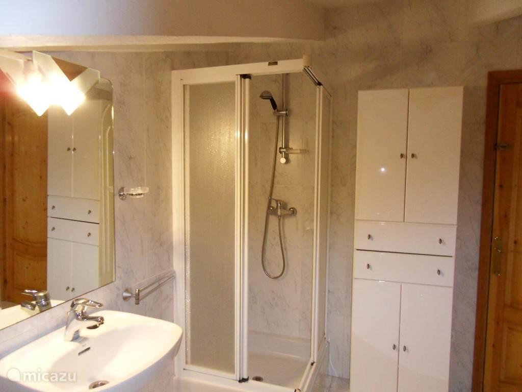 Badkamer met douche, Toilet, kaptafel en wasmachine