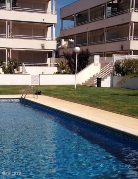 Tuin en zwembad van het appartement.
