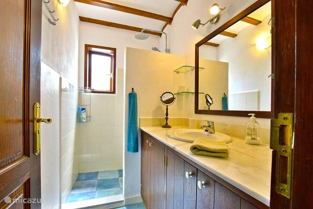Badkamer met douche en wastafel,  toilet apart
