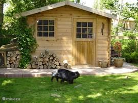 bungalow singen wheels in sint maarten nordholland. Black Bedroom Furniture Sets. Home Design Ideas