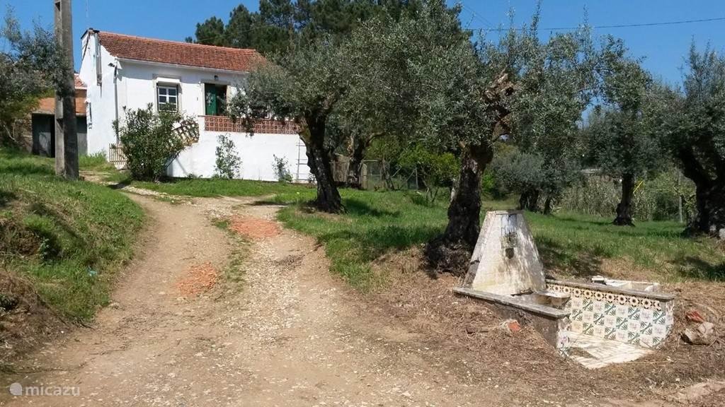 Vakantiehuis Portugal, Ribatejo – boerderij Cruz Pequena