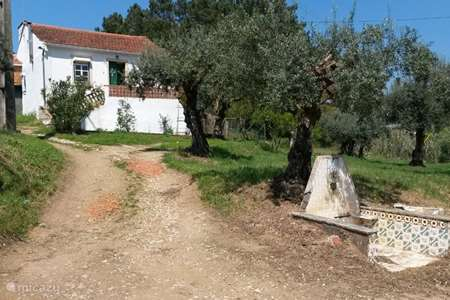 Vacation rental Portugal – farmhouse Cruz Pequena