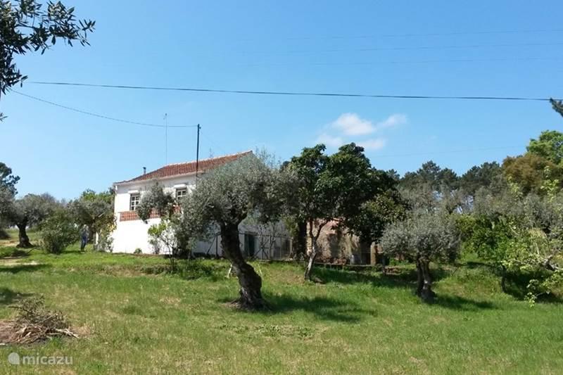 Vakantiehuis Portugal, Ribatejo, Junceira Boerderij Charmant en vrijstaand vakantiehuis