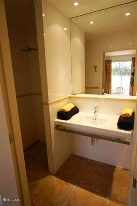 brand new bathrooms with luxury sky shower (large shower), toilet, sink and a large wall mirror