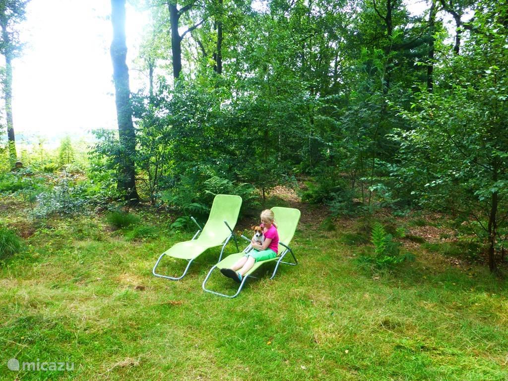 We hebben inmiddels nieuwe ligstoelen. Niet zwaar en dus gemakkelijk met de zon mee te verplaatsen.