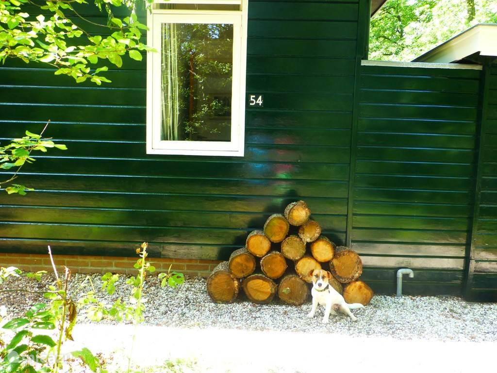 Voorheen werd ons huis het houtjeshuis genoemd. Ter herinnering en voor het kleine wild, hebben we overal stapels hout gelegd.