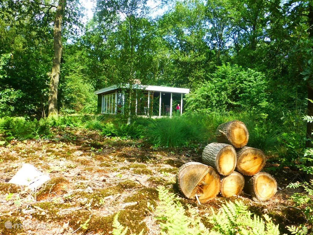 Juist deze stapeltjes hout zorgen ervoor dat het het kleine wild en ook insecten aantrekt.