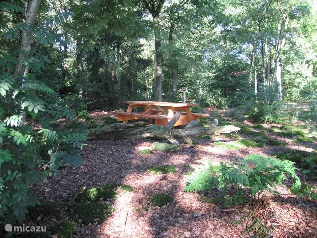 Onze enorme picknick tafel hebben we laten maken door een lokaal bedrijf nabij Diever. Het is bovendien gemaakt van hout afkomstig van een Douglas spar uit de omgeving van Diever.