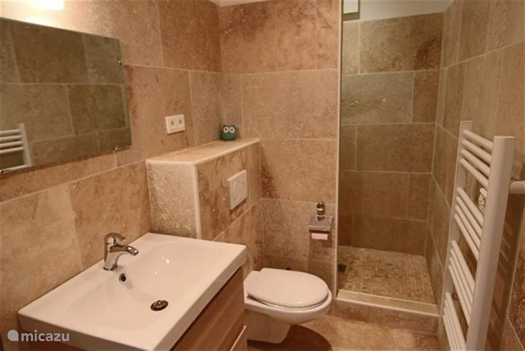 Bathroom on 1st Floor
